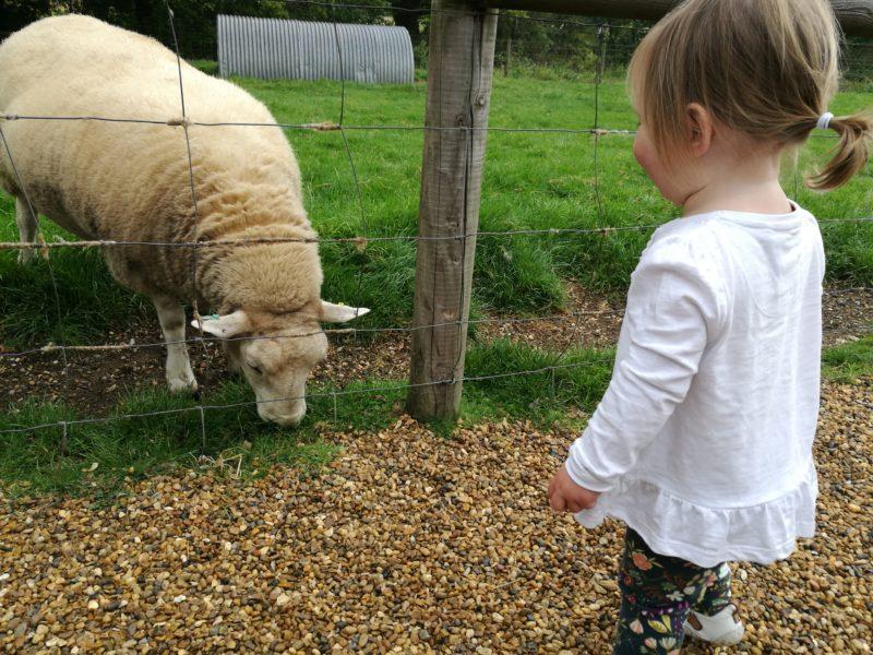 Erin at Wroxham Barns