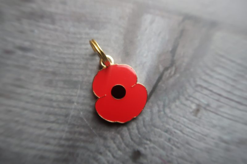 Christmas With The Poppy Shop