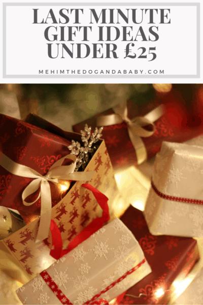 Last Minute Gift Ideas Under £25
