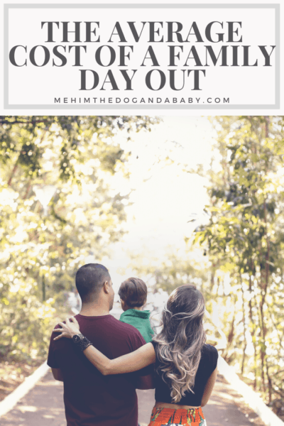 The Average Cost Of A Family Day Out
