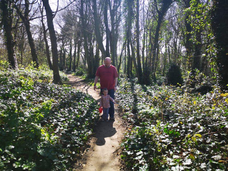 Cromer woodland walk