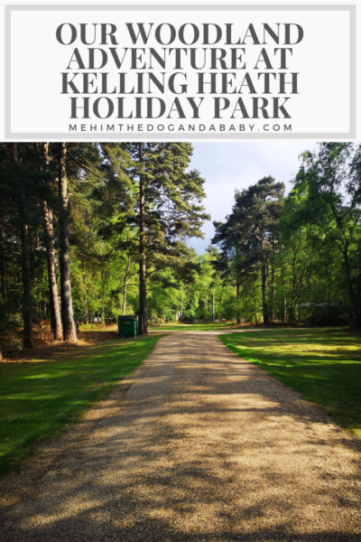 Our Woodland Adventure At Kelling Heath Holiday Park