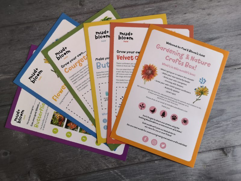 Mud & Bloom activity cards