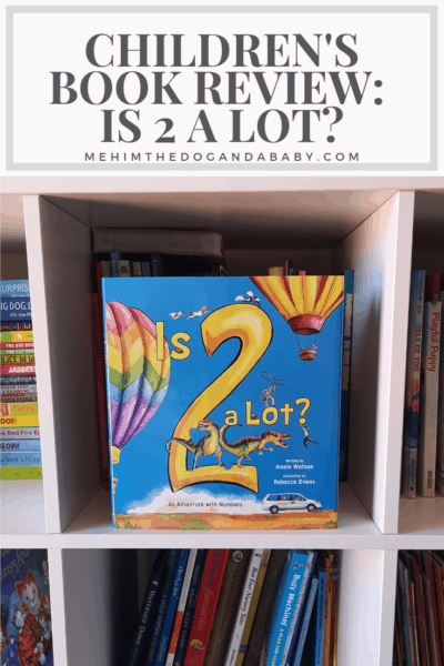 Children's Book Review: Is 2 A Lot?
