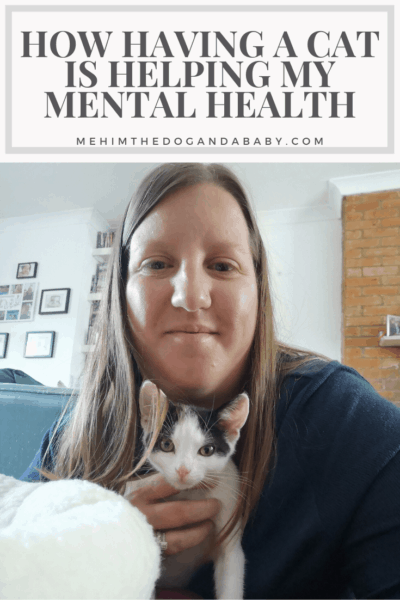 How Having A Cat Is Helping My Mental Health Pinterest