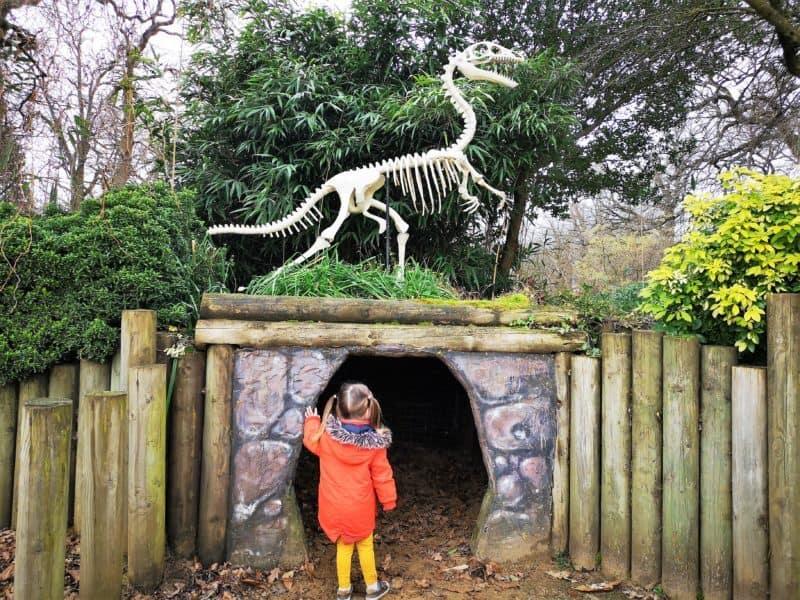 Roarr Dinosaur Adventure