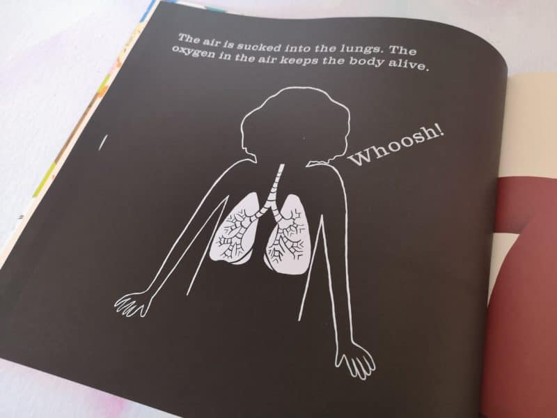 Children's Book Review:The Human Body: A Shine A Light Book