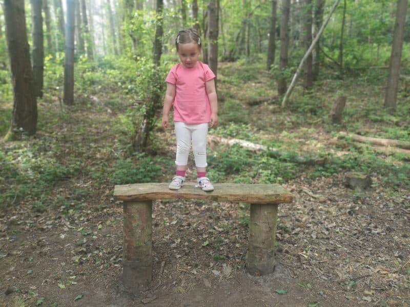 Saddler's Woods