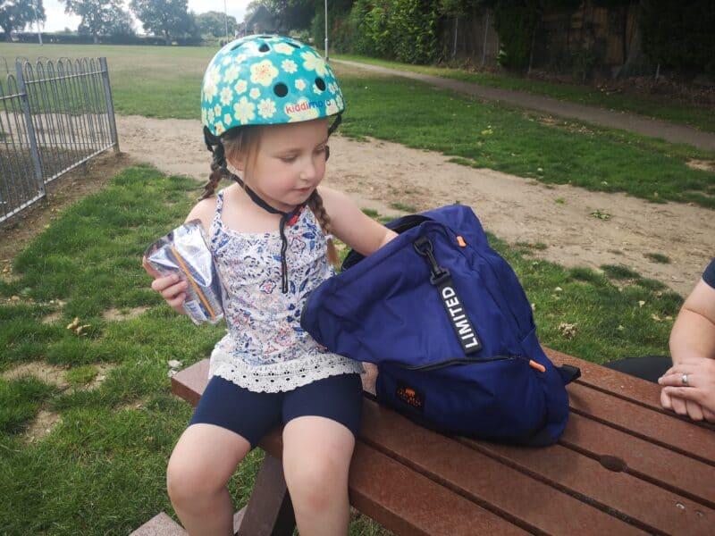 Lemont Blue Foldable Backpack