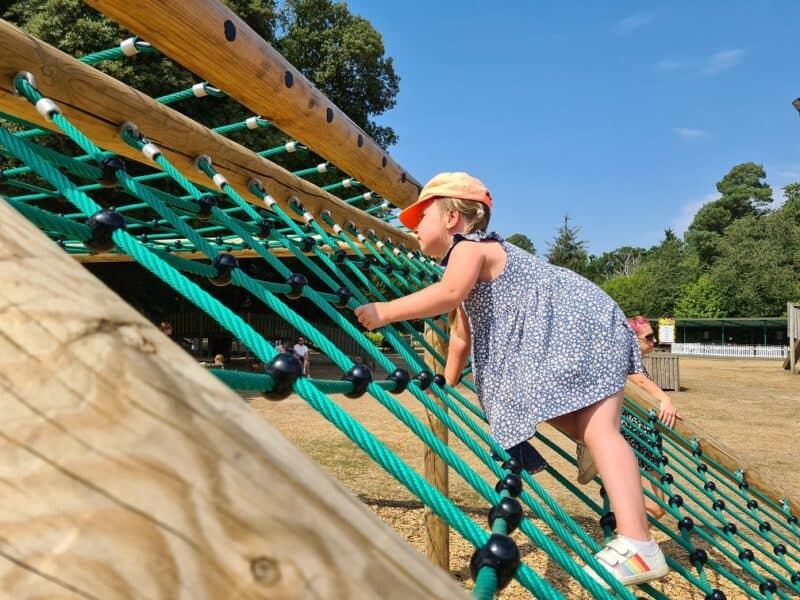 Erin climbing at Roarr Dinosaur Adventure