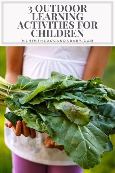 3 Outdoor Learning Activities for Children