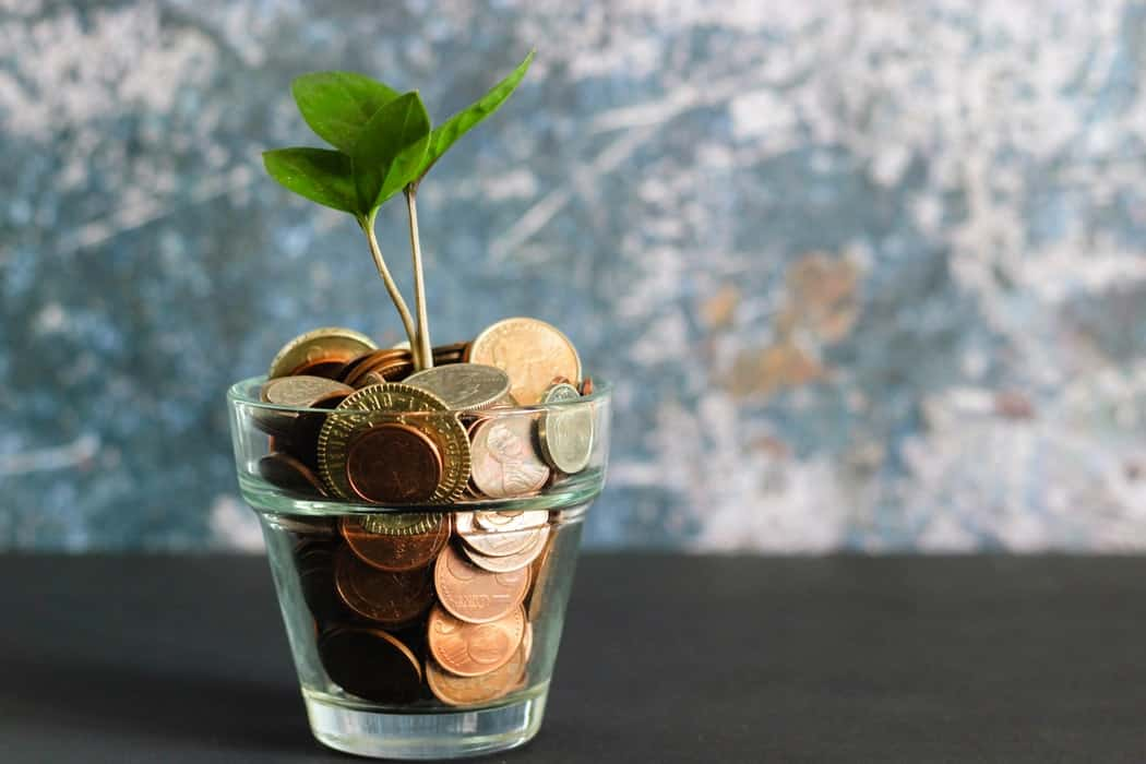 Money in a pot with a plant