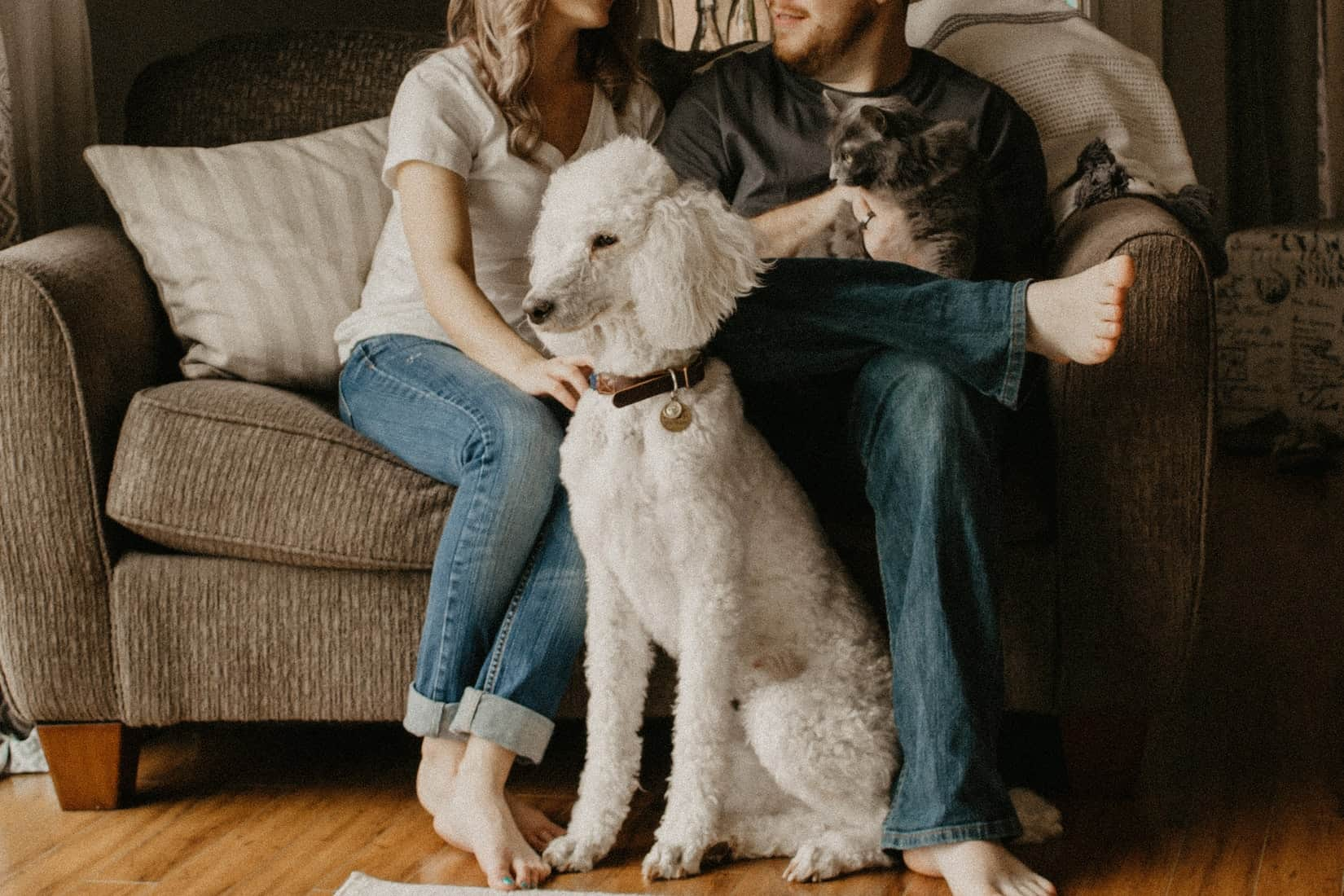 Family with dog and cat