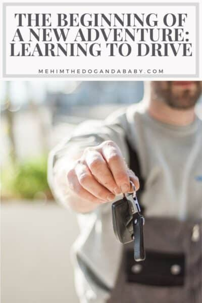 The Beginning Of A New Adventure: Learning To Drive