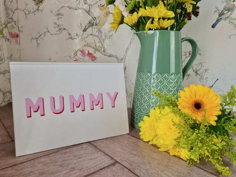 Mummy notebook