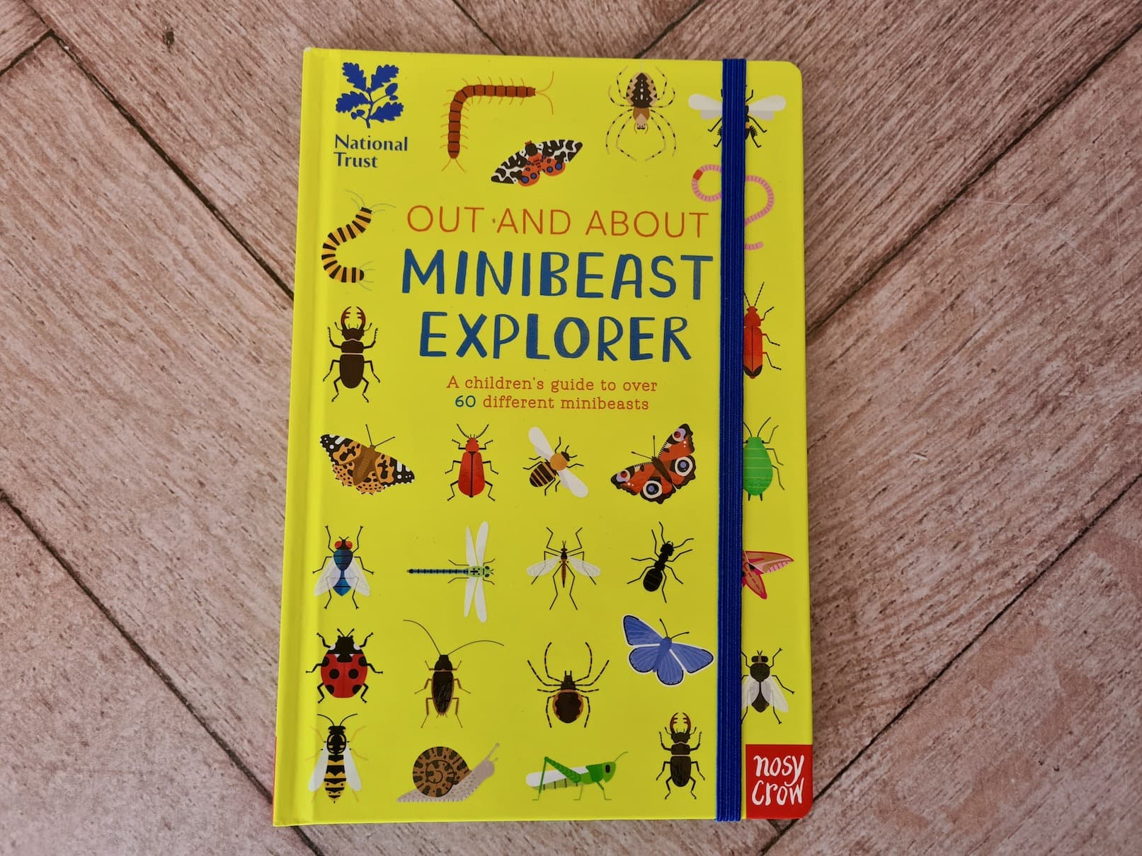 Out and About. Minibeast Explorer