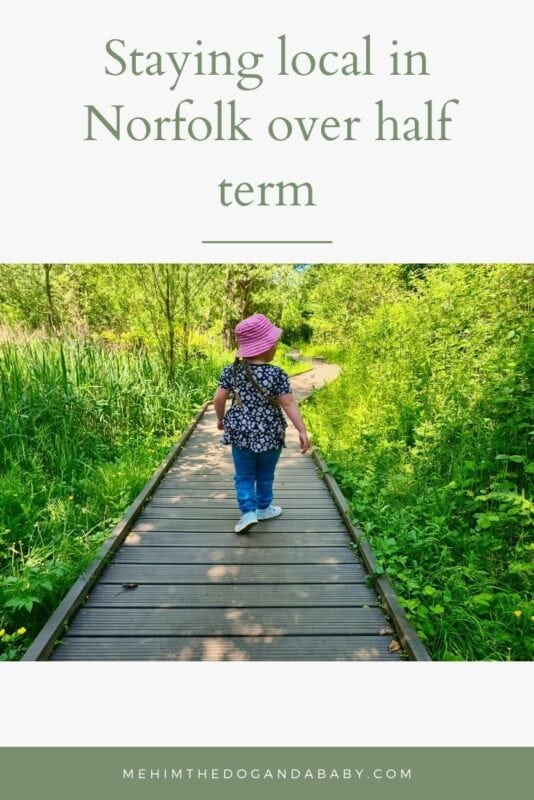 Staying local in Norfolk over half term