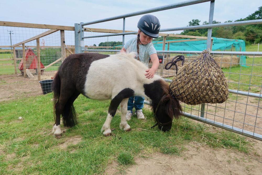 Bumblebarn Erin and Shetland pony