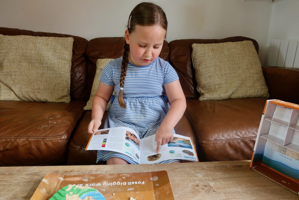Learning Resources Dig and Display Fossil Kit