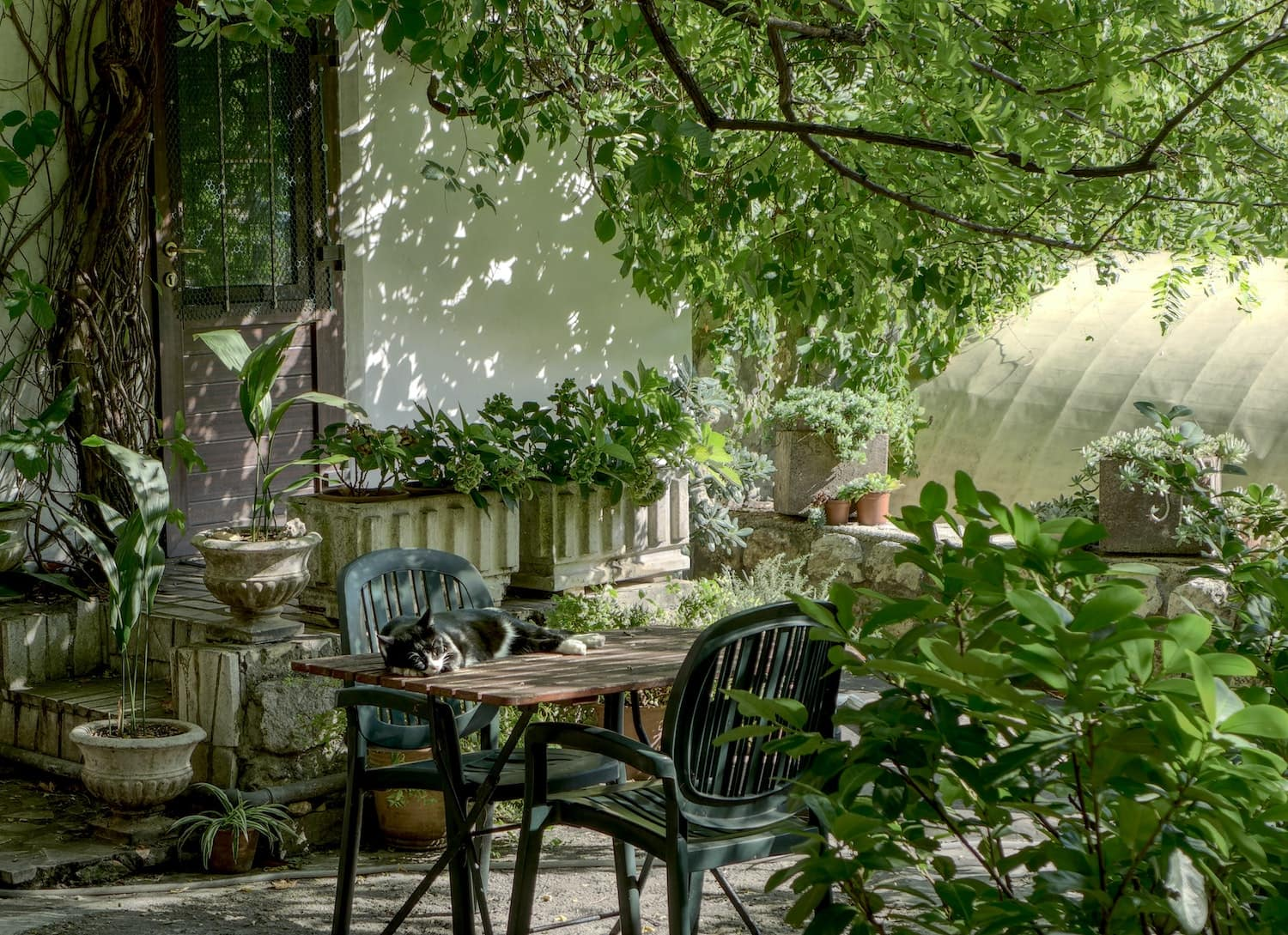 Table and chairs in a garden
