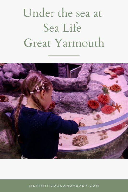 Under the sea at Sea Life Great Yarmouth