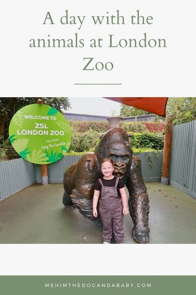 A day with the animals at London Zoo