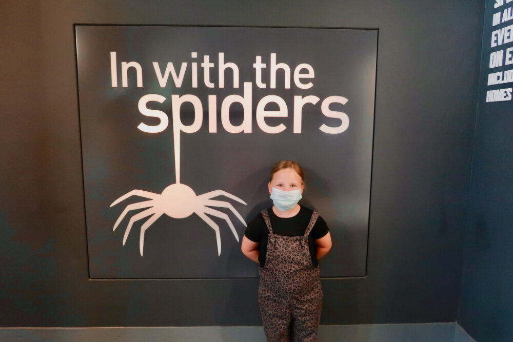 London Zoo In with the spiders