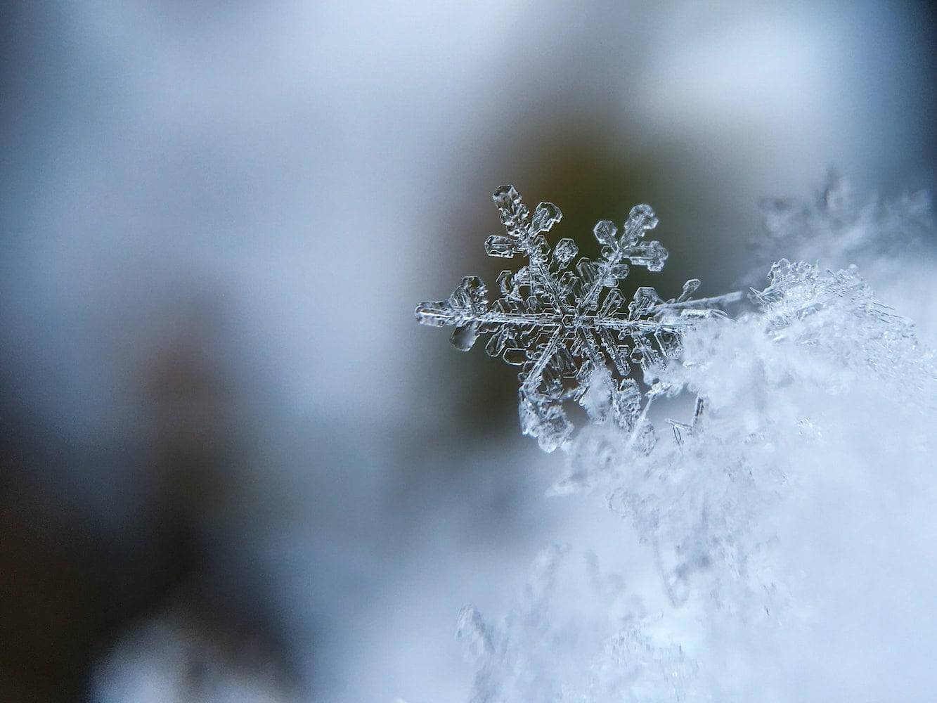 focus on snowflake in a winter setting