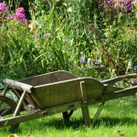 """Kids love gardens! They're a great place to play in and explore, at least as long as they're kept safe. It can be a bit tricky to pull together a garden for the whole family, but it's definitely possible, and with a bit of advice from Olive Grove I've been able to narrow down 7 ways to get the perfect family summer garden. Get the kids involved! A garden for the family should be planned by the family, not just by the adults. Let your kids get stuck in and give them time to find """"their"""" area (the bit they like to play in the most) so you know not to cover it up or pave over it. If they're less of the playing type, why not let them help plant seeds or ask them what kind of thing they'd like to play with in the 'new' garden? Be careful with water Accessible ponds and natural pools can be a lovely decoration, but they're a big danger to children and family pets. A few inches is more than enough for a child to drown in, and even if they're just sitting in the water, it could end up being really really cold! That's not to say you should get rid of all the water, but you should definitely make it inaccessible to younger members of the family. Bordering off a pond or capping a water barrel can go a long way to keeping your garden safe. Always have a shared space It can be tempting to split your garden into the 'play area' and the 'adult's area', but it'll do your family no harm to mix them together a little bit! Putting most of the seating in the middle of the garden might help here, since it'll draw the whole family towards the same area. Guests should also be considered – they might not be comfortable staying in a defined area, so it's important to accommodate everybody in each area of the garden – even something as simple as some children's chairs near the adult's tables or a bench near the children's area could work just fine! Get involved in DIY DIY projects can be a great way to make your garden a more accessible space – building a treehouse might be a bit out of your"""