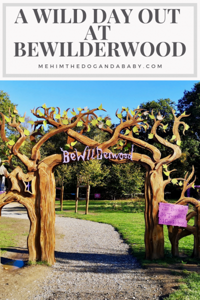 A Wild Day Out At BeWILDerwood