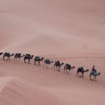 Choosing Morocco As A Family Holiday Destination