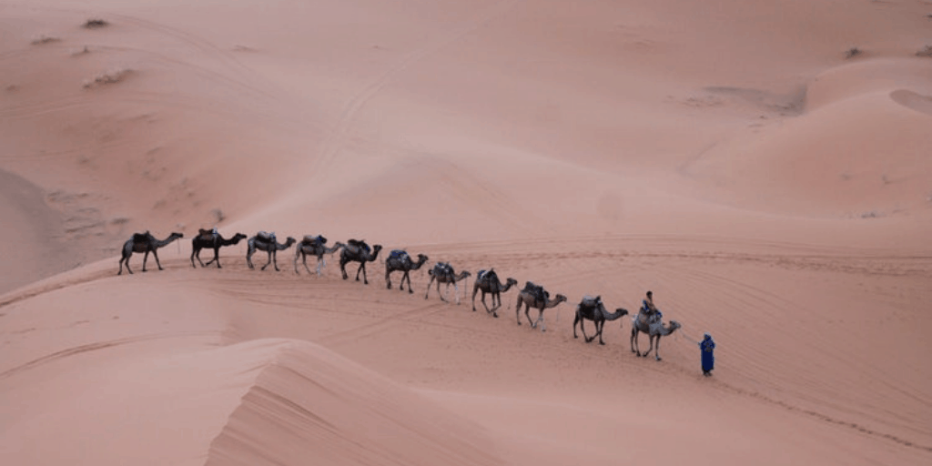 Choosing Morocco As A Family Holiday Destination