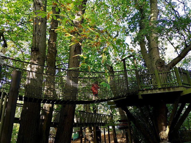 BeWILDerwood bridge