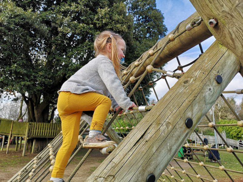 Roarr! Dinosaur Adventure climbing equipment